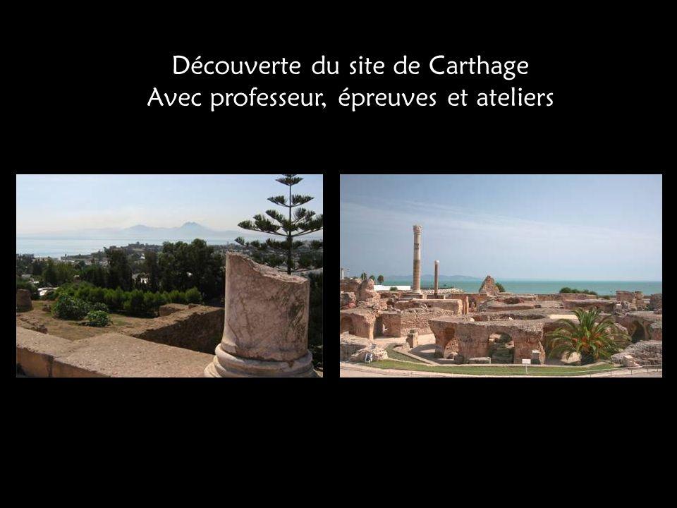 Découverte du site de Carthage Avec professeur, épreuves et ateliers