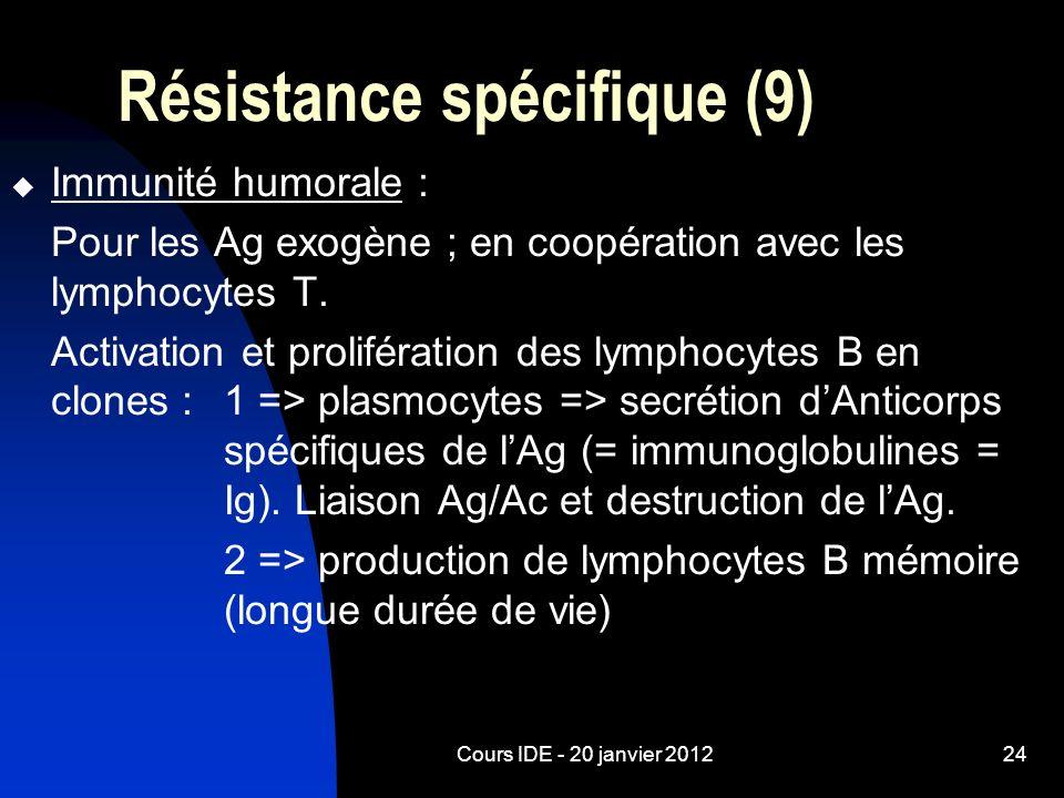 Cours IDE - 20 janvier 201224 Résistance spécifique (9) Immunité humorale : Pour les Ag exogène ; en coopération avec les lymphocytes T. Activation et