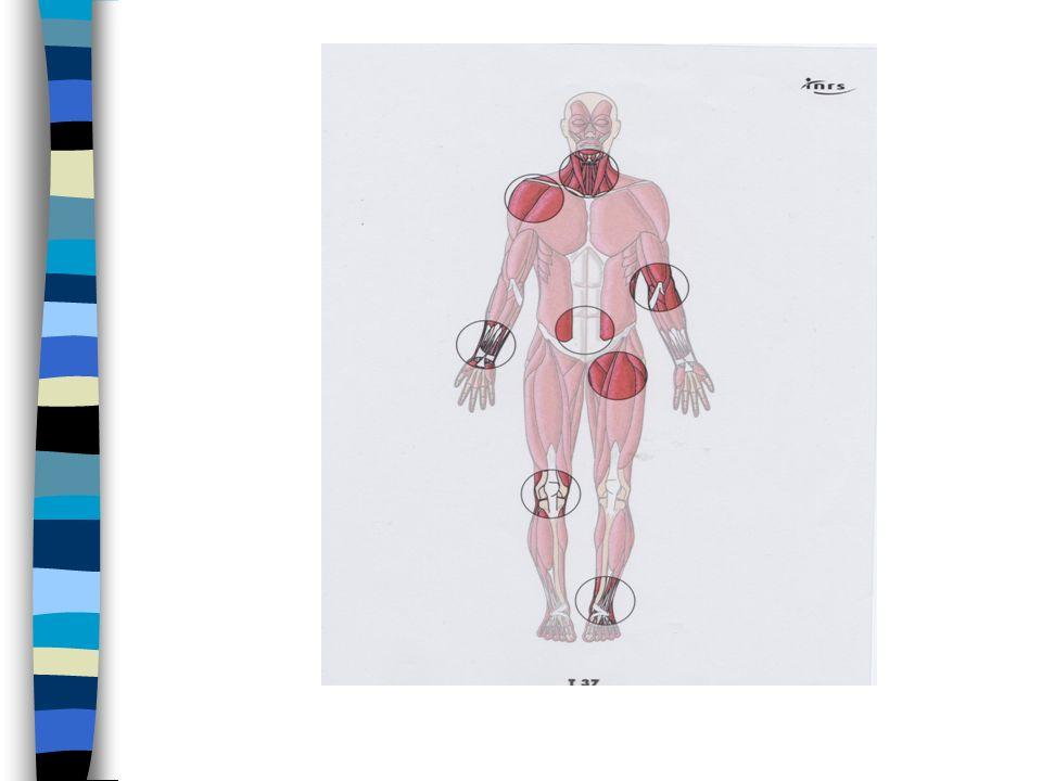 LES TMS (1) (troubles musculo-squelettiques) n TMS du membre supérieur –bursite –épycondilyte (tennis elbow) –syndrome du canal carpien