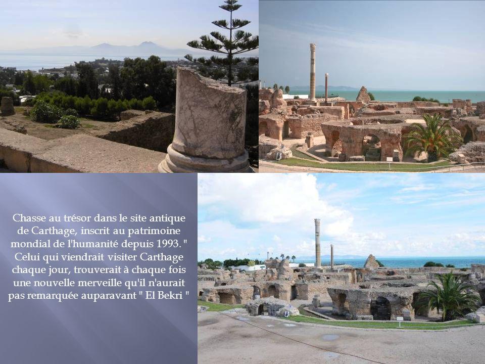 Chasse au trésor dans le site antique de Carthage, inscrit au patrimoine mondial de l'humanité depuis 1993.