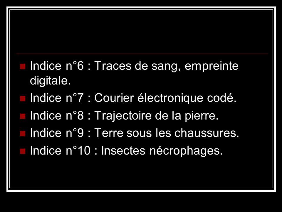 Indice n°6 : Traces de sang, empreinte digitale. Indice n°7 : Courier électronique codé. Indice n°8 : Trajectoire de la pierre. Indice n°9 : Terre sou