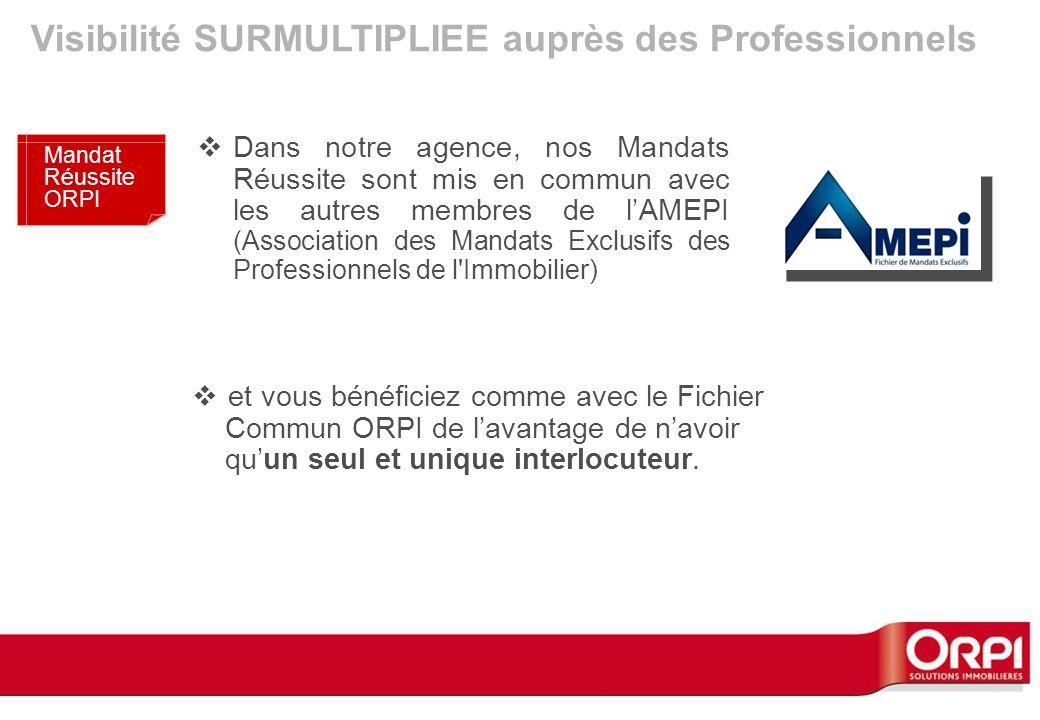 Dans notre agence, nos Mandats Réussite sont mis en commun avec les autres membres de lAMEPI (Association des Mandats Exclusifs des Professionnels de