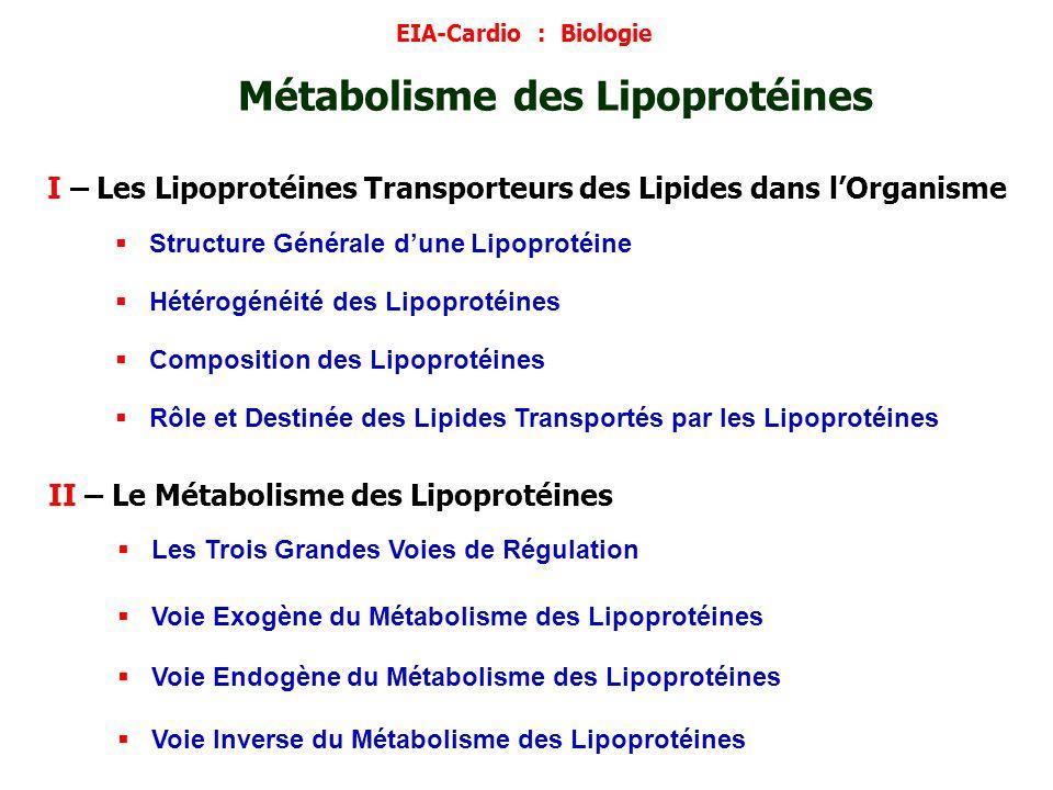 I – Les Lipoprotéines Transporteurs des Lipides dans lOrganisme Structure Générale dune Lipoprotéine Hétérogénéité des Lipoprotéines Composition des L