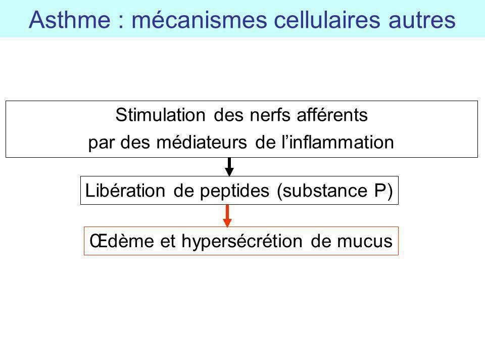 Stimulation des nerfs afférents par des médiateurs de linflammation Asthme : mécanismes cellulaires autres Libération de peptides (substance P) Œdème