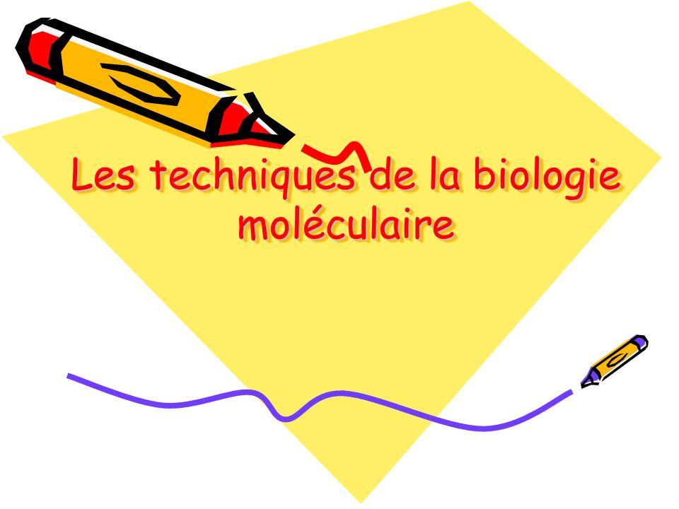 Les techniques de la biologie moléculaire