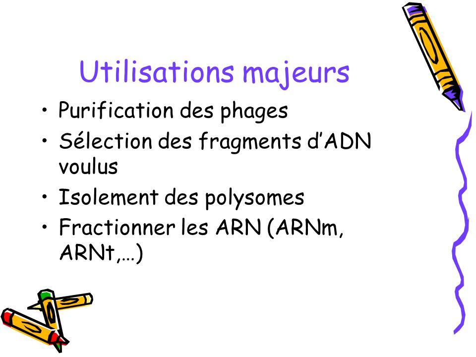 Utilisations majeurs Purification des phages Sélection des fragments dADN voulus Isolement des polysomes Fractionner les ARN (ARNm, ARNt,…)