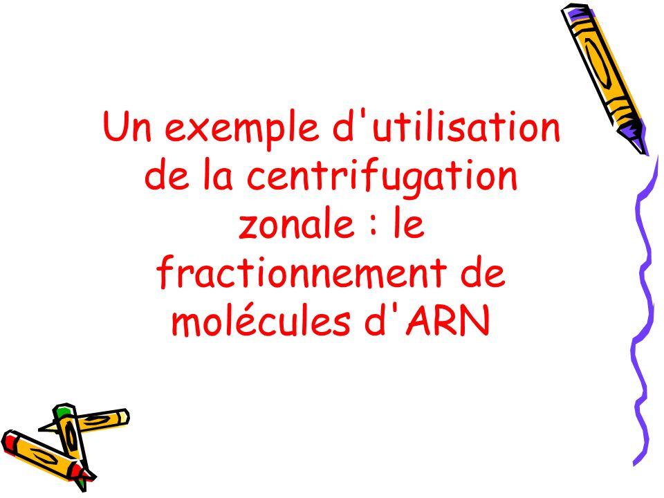 Un exemple d'utilisation de la centrifugation zonale : le fractionnement de molécules d'ARN