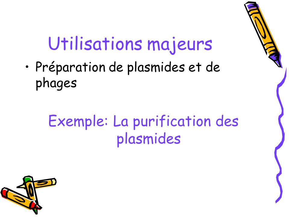 Utilisations majeurs Préparation de plasmides et de phages Exemple: La purification des plasmides