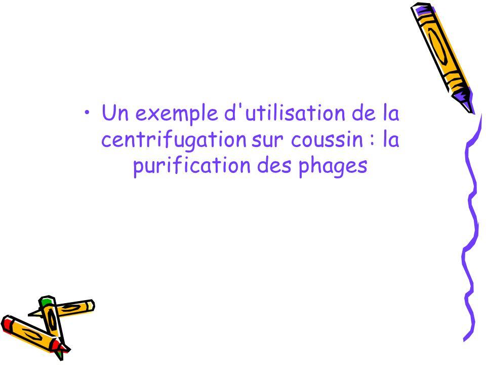 Un exemple d'utilisation de la centrifugation sur coussin : la purification des phages