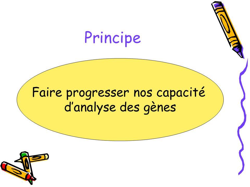 Principe Faire progresser nos capacité danalyse des gènes