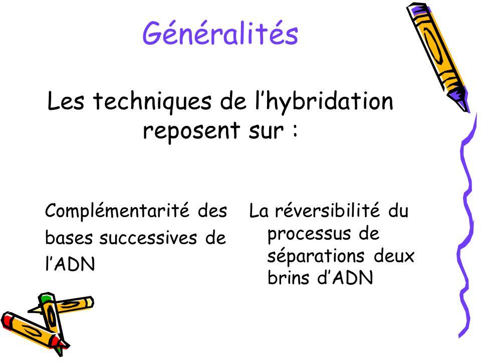 Généralités Les techniques de lhybridation reposent sur : Complémentarité des bases successives de lADN La réversibilité du processus de séparations d