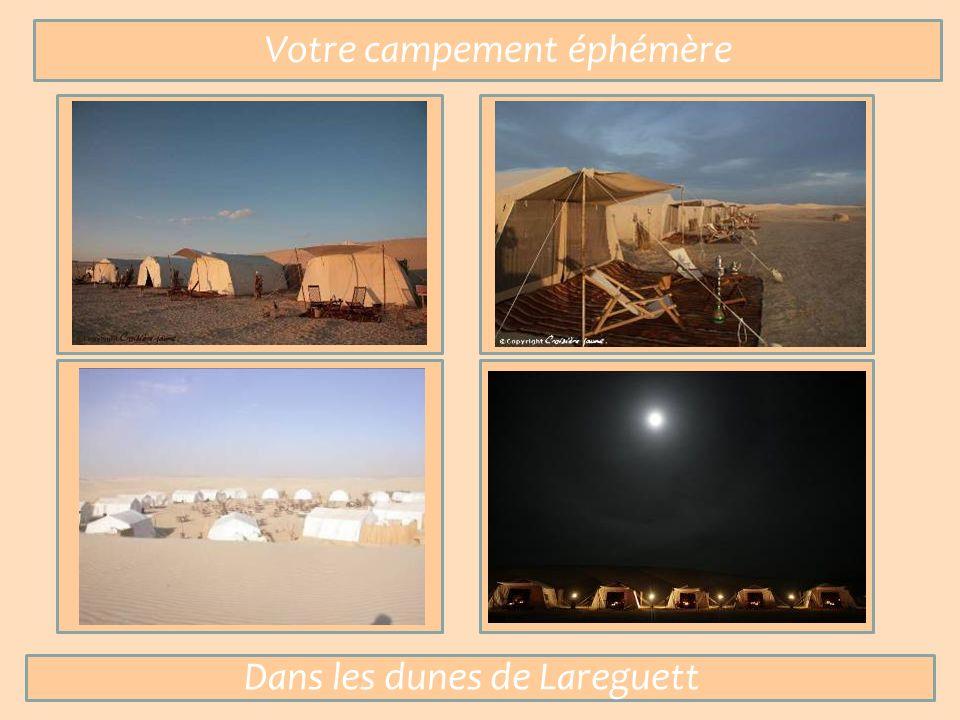Votre campement éphémère Dans les dunes de Lareguett