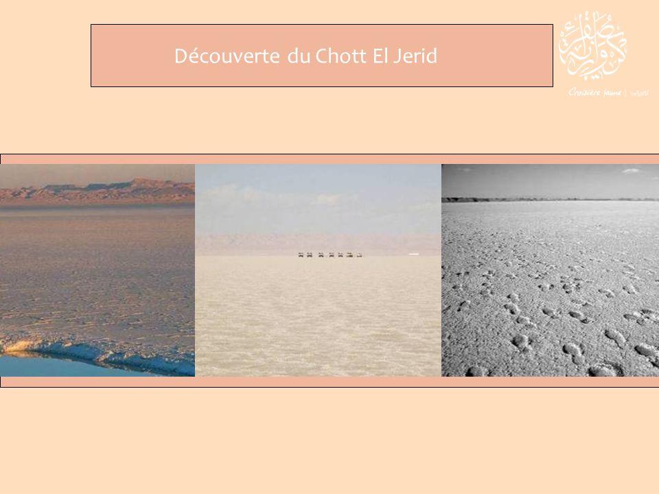 Découverte du Chott El Jerid