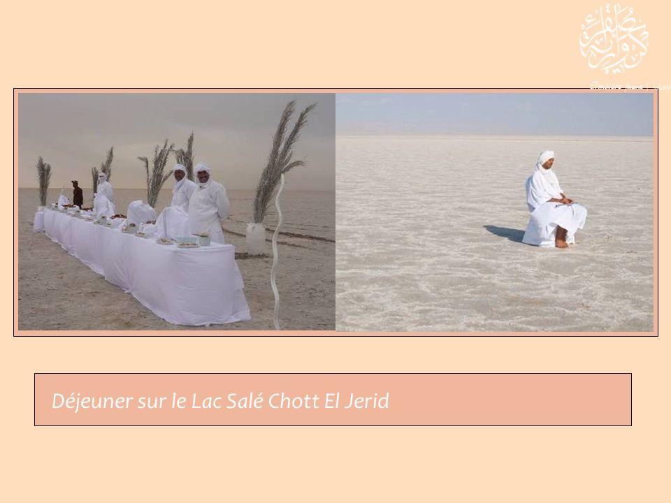 Déjeuner sur le Lac Salé Chott El Jerid