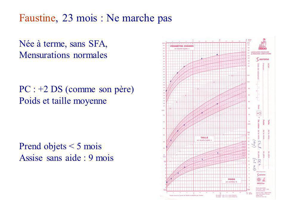 Faustine, 23 mois : Ne marche pas Née à terme, sans SFA, Mensurations normales PC : +2 DS (comme son père) Poids et taille moyenne Prend objets < 5 mois Assise sans aide : 9 mois