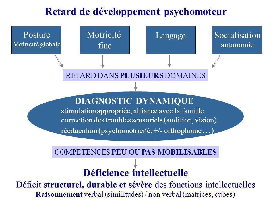 Retard de développement psychomoteur Posture Motricité globale Motricité fine Langage Socialisation autonomie Déficience intellectuelle Déficit struct
