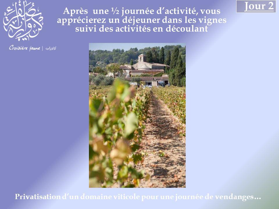 Après une ½ journée dactivité, vous apprécierez un déjeuner dans les vignes suivi des activités en découlant Jour 2 Privatisation dun domaine viticole pour une journée de vendanges…