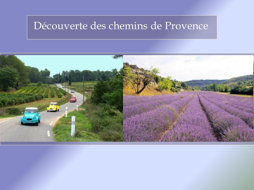 Découverte des chemins de Provence