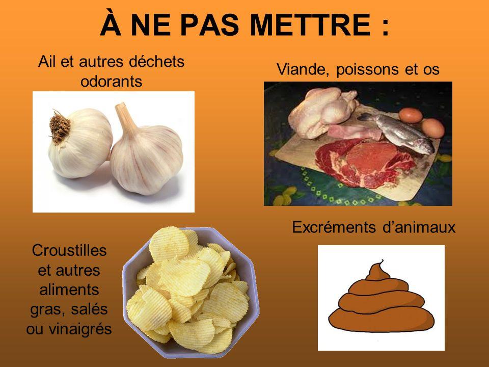 À NE PAS METTRE : Viande, poissons et os Ail et autres déchets odorants Croustilles et autres aliments gras, salés ou vinaigrés Excréments danimaux