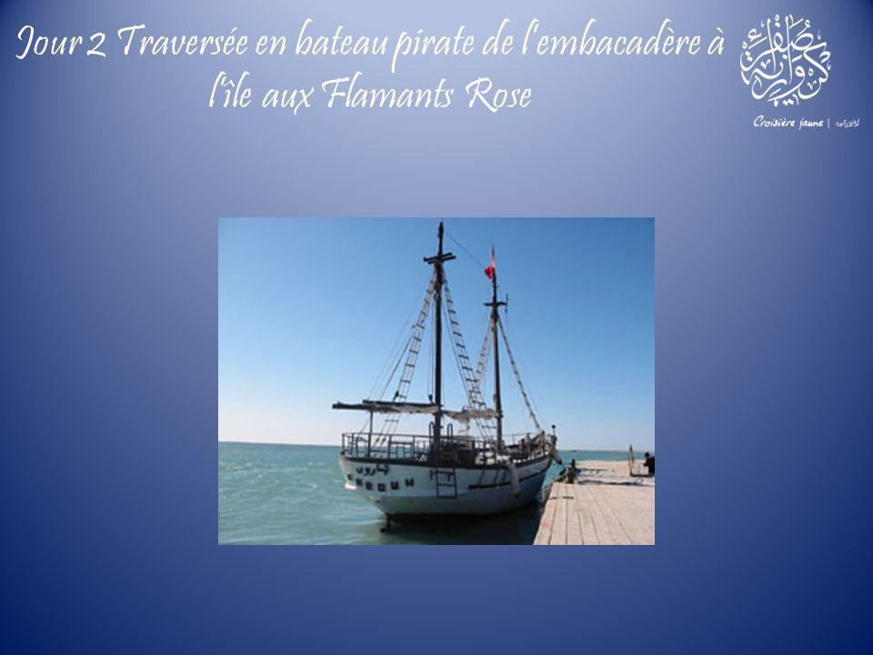 Jour 2 Traversée en bateau pirate de lembacadère à lîle aux Flamants Rose