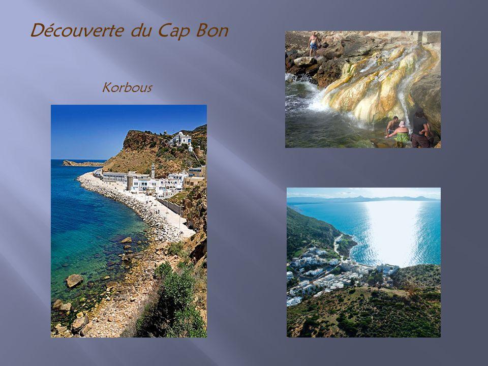 Découverte du Cap Bon Korbous