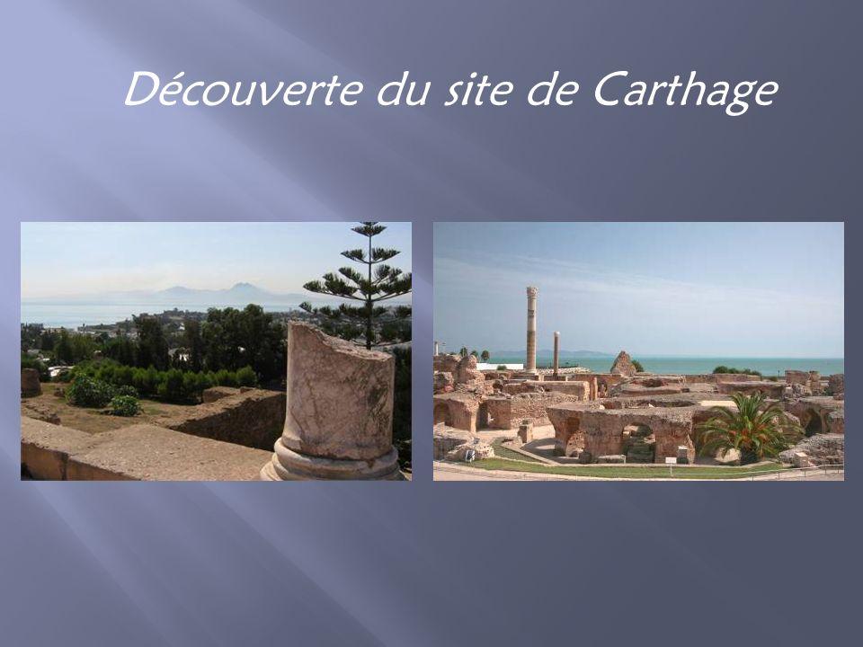 Découverte du site de Carthage
