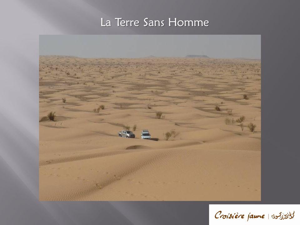 Le voyage ne fait que commencer Depuis votre Lodge vous pourrez jouir d une vue exceptionnelle sur l espace infini qu offre le désert.
