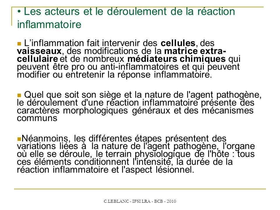 C.LEBLANC - IFSI LRA - BCB - 2010 Les acteurs et le déroulement de la réaction inflammatoire Linflammation fait intervenir des cellules, des vaisseaux