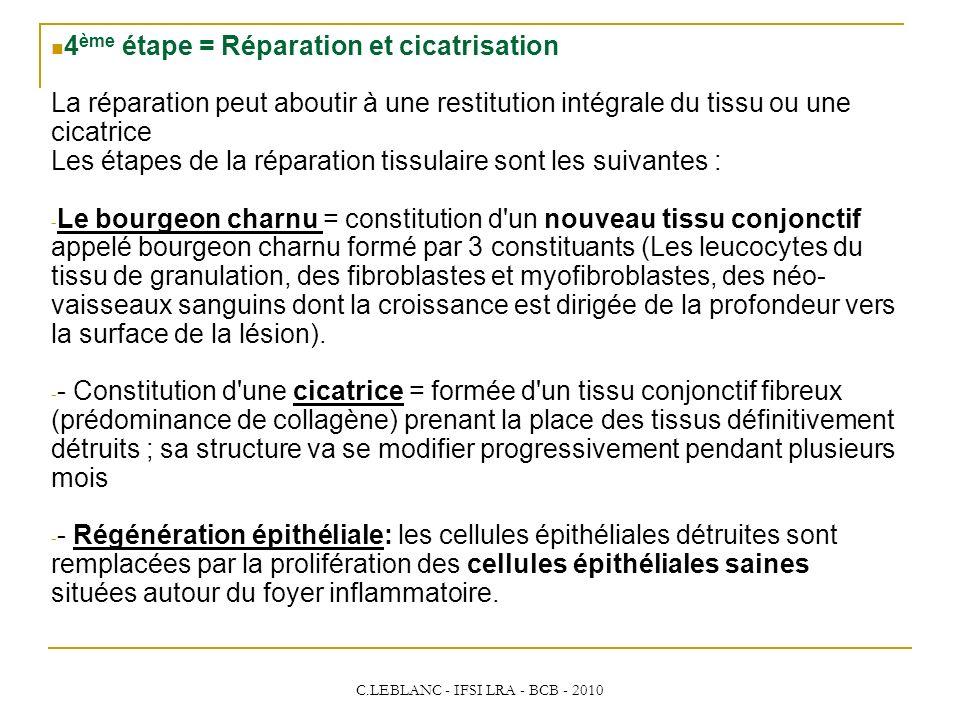 C.LEBLANC - IFSI LRA - BCB - 2010 4 ème étape = Réparation et cicatrisation La réparation peut aboutir à une restitution intégrale du tissu ou une cic