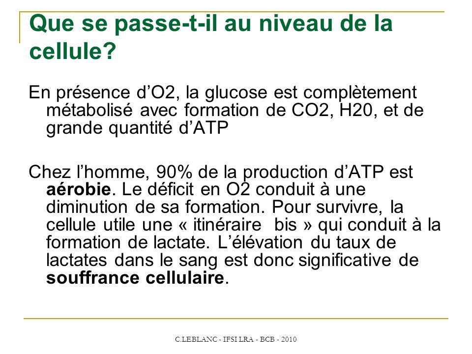 C.LEBLANC - IFSI LRA - BCB - 2010 Que se passe-t-il au niveau de la cellule? En présence dO2, la glucose est complètement métabolisé avec formation de