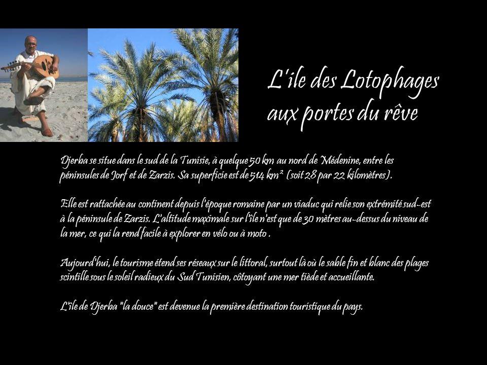 Lile des Lotophages aux portes du rêve Djerba se situe dans le sud de la Tunisie, à quelque 50 km au nord de Médenine, entre les péninsules de Jorf et