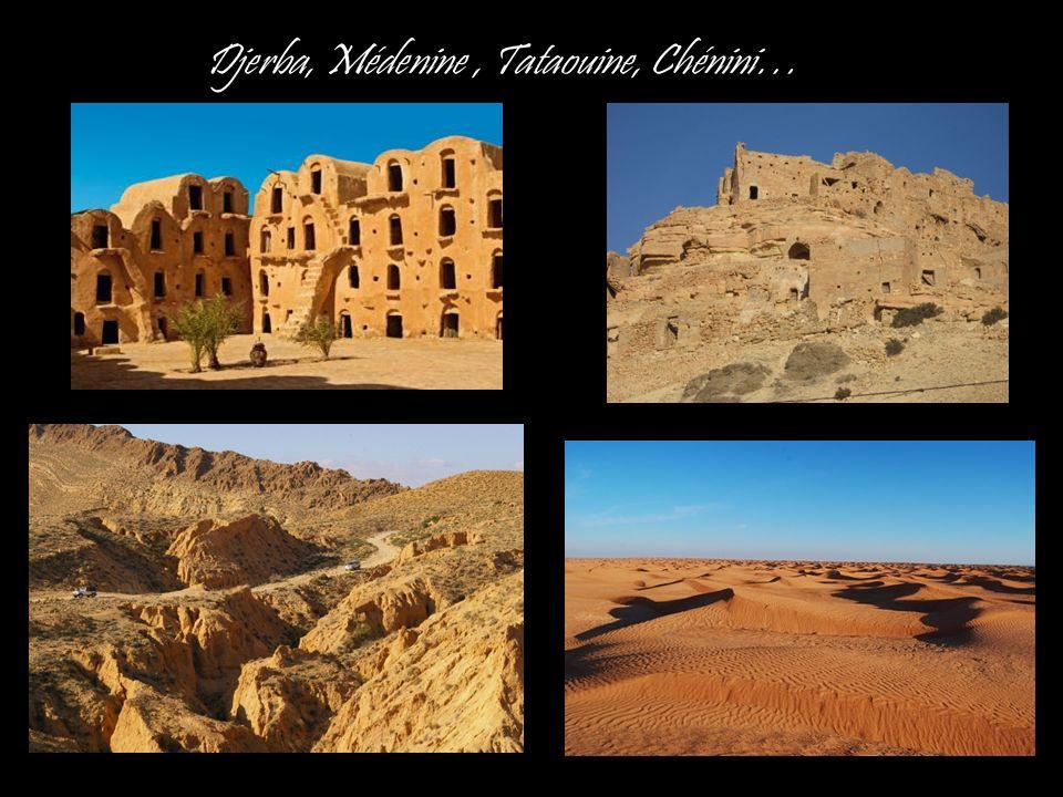 Djerba, Médenine, Tataouine, Chénini…