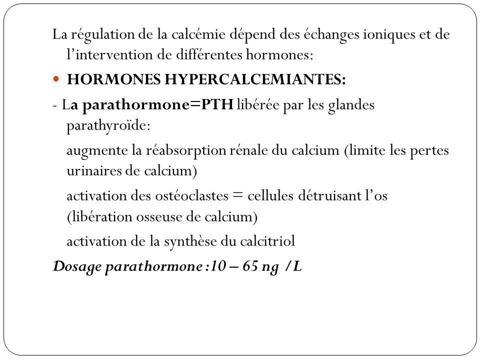 La régulation de la calcémie dépend des échanges ioniques et de lintervention de différentes hormones: HORMONES HYPERCALCEMIANTES: - La parathormone=P