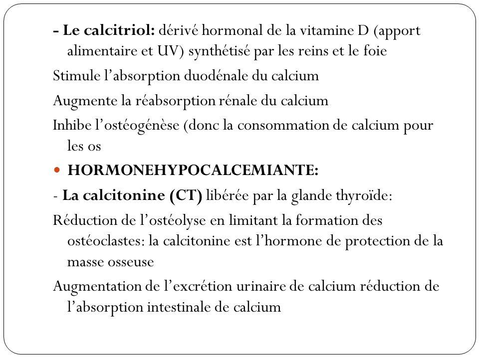 - Le calcitriol: dérivé hormonal de la vitamine D (apport alimentaire et UV) synthétisé par les reins et le foie Stimule labsorption duodénale du calc