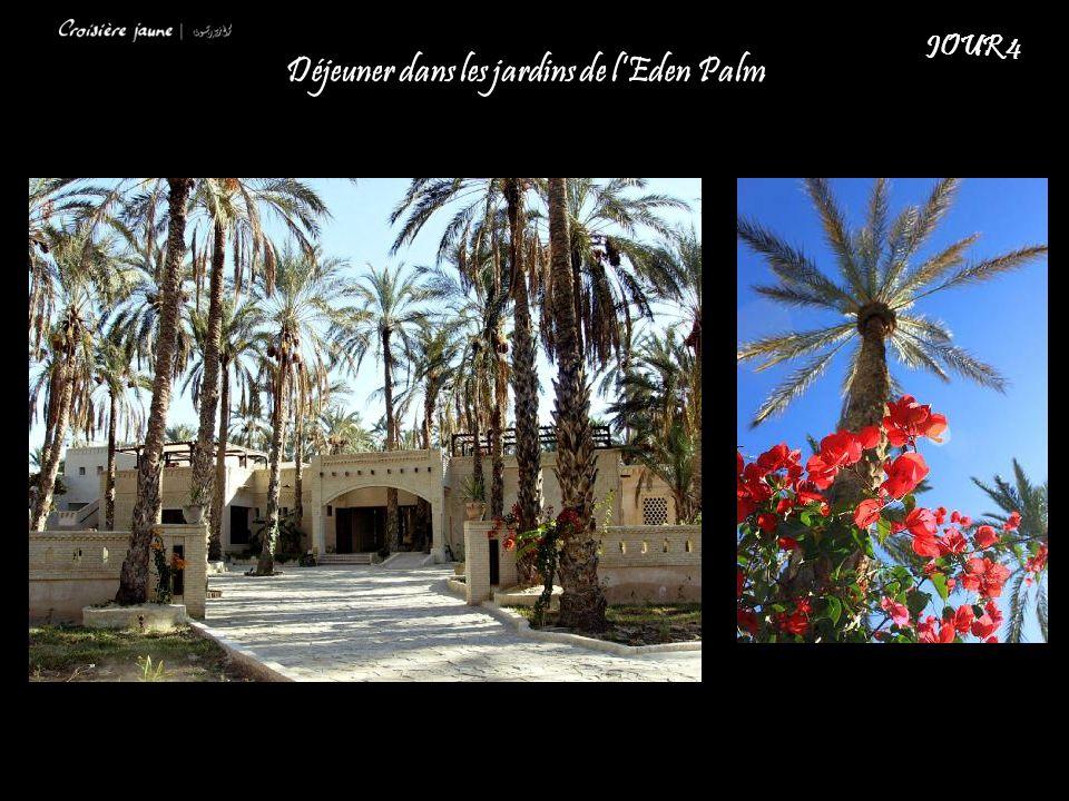 Déjeuner dans les jardins de lEden Palm JOUR 4