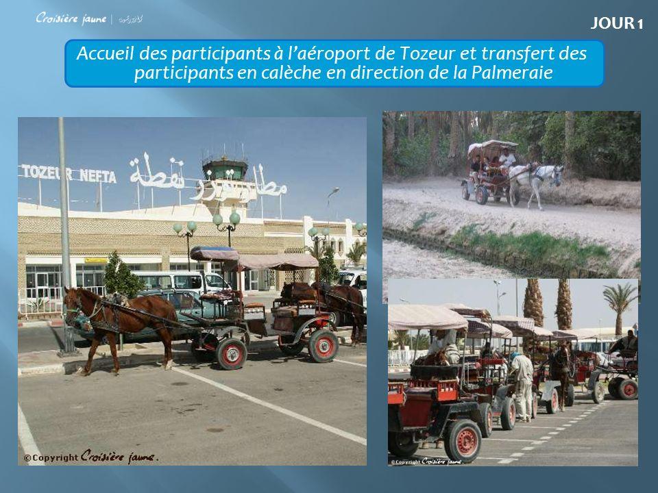 Accueil des participants à laéroport de Tozeur et transfert des participants en calèche en direction de la Palmeraie JOUR 1