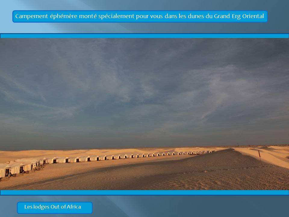 Campement éphémère monté spécialement pour vous dans les dunes du Grand Erg Oriental Les lodges Out of Africa