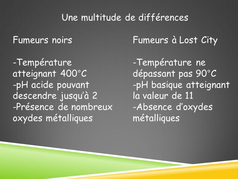 Une multitude de différences Fumeurs noirs -Température atteignant 400°C -pH acide pouvant descendre jusquà 2 -Présence de nombreux oxydes métalliques Fumeurs à Lost City -Température ne dépassant pas 90°C -pH basique atteignant la valeur de 11 -Absence doxydes métalliques