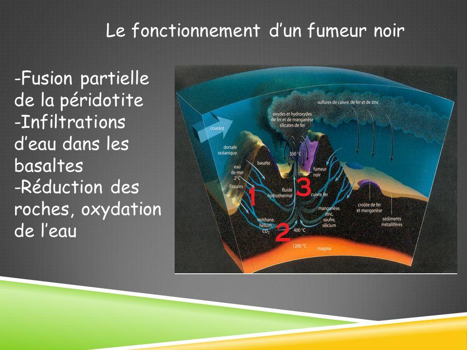 Le fonctionnement dun fumeur noir -Fusion partielle de la péridotite -Infiltrations deau dans les basaltes -Réduction des roches, oxydation de leau