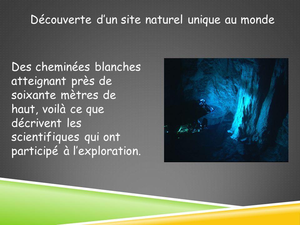 Découverte dun site naturel unique au monde Des cheminées blanches atteignant près de soixante mètres de haut, voilà ce que décrivent les scientifiques qui ont participé à lexploration.