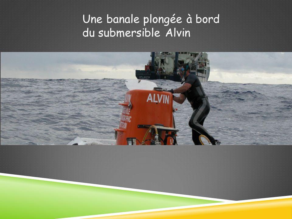 Une banale plongée à bord du submersible Alvin