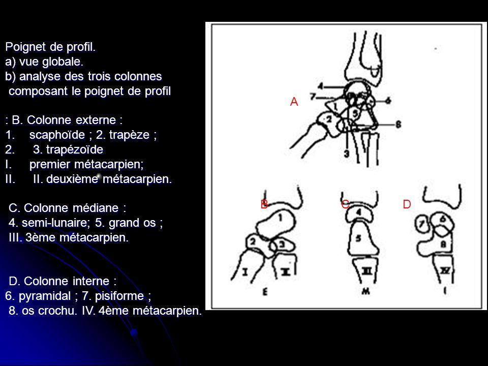 Poignet de profil. a) vue globale. b) analyse des trois colonnes composant le poignet de profil composant le poignet de profil : B. Colonne externe :