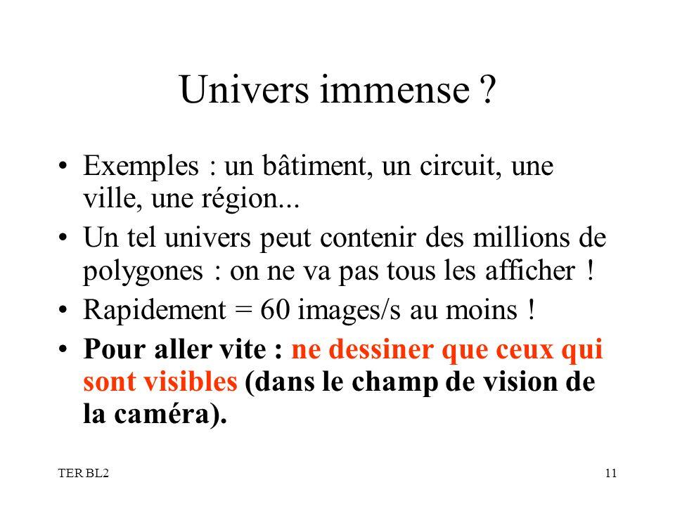 TER BL211 Univers immense ? Exemples : un bâtiment, un circuit, une ville, une région... Un tel univers peut contenir des millions de polygones : on n