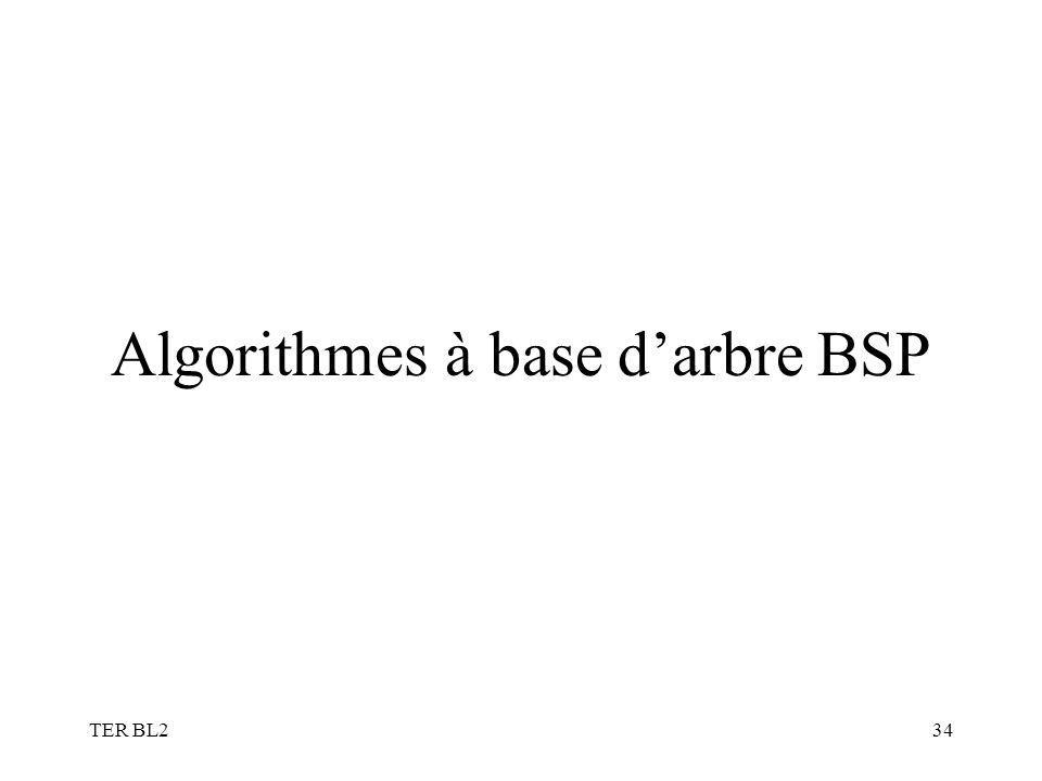 TER BL234 Algorithmes à base darbre BSP