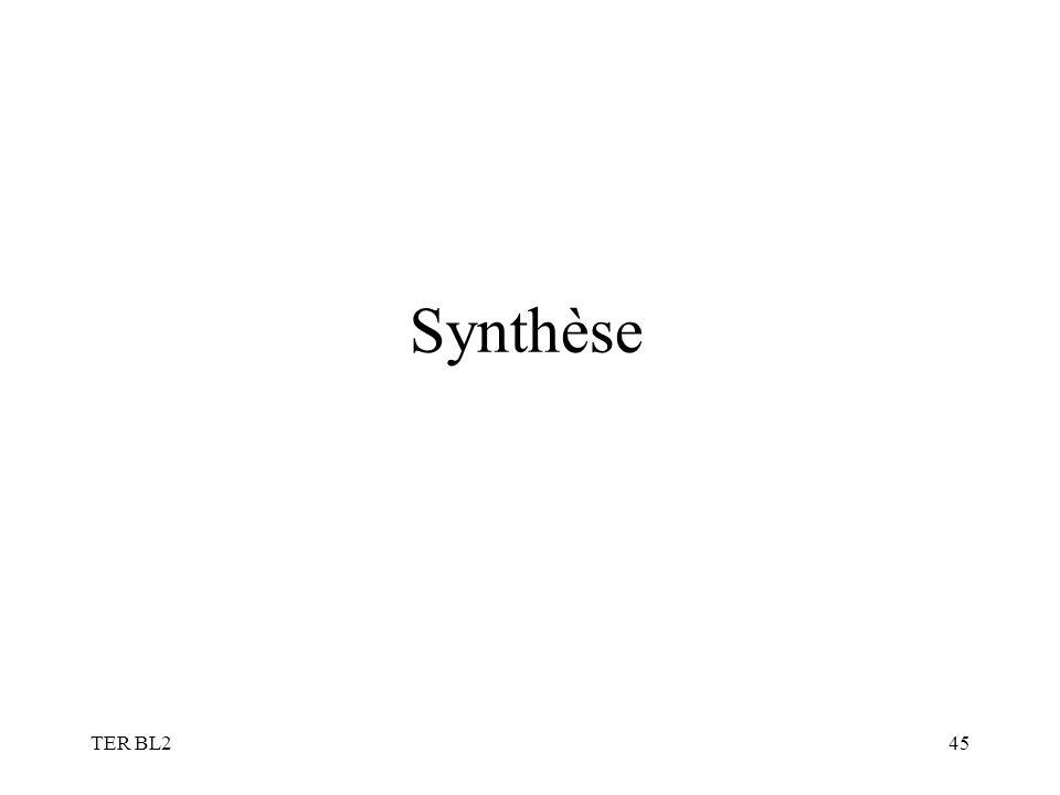 TER BL245 Synthèse