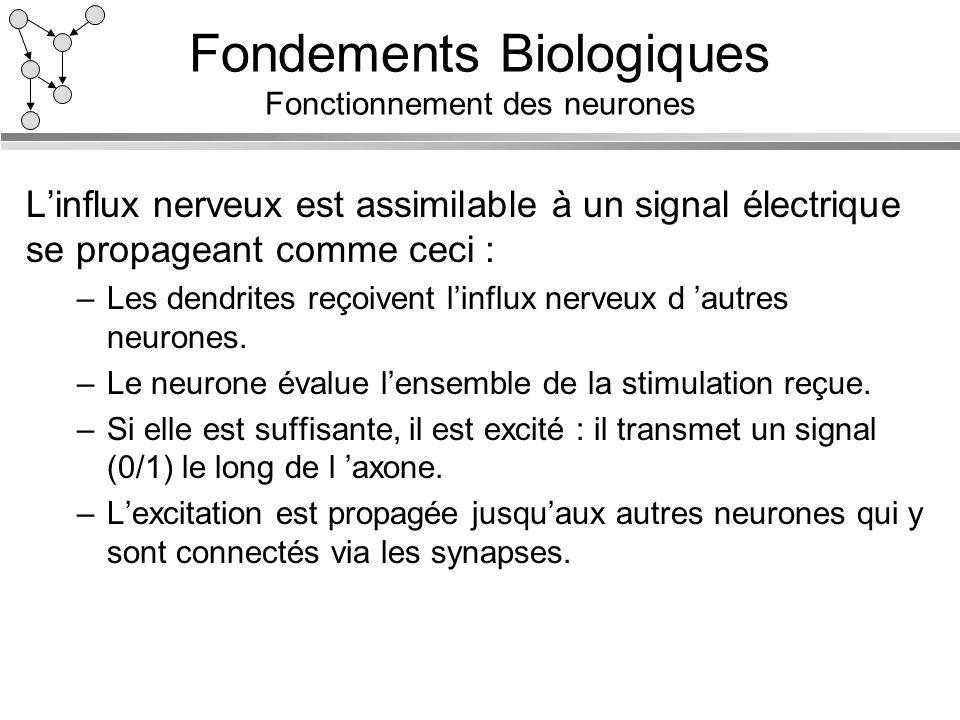 Fondements Biologiques Fonctionnement des neurones Linflux nerveux est assimilable à un signal électrique se propageant comme ceci : –Les dendrites re