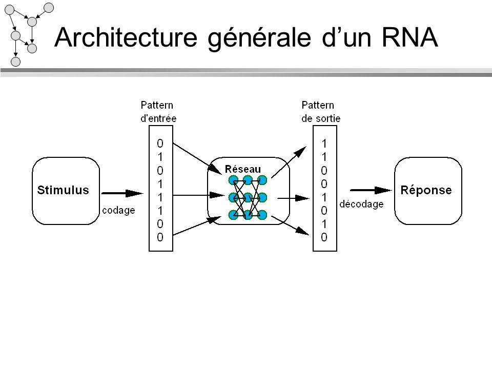 Architecture générale dun RNA