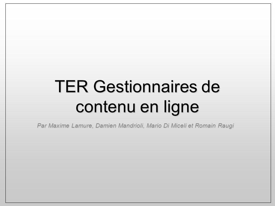TER Gestionnaires de contenu en ligne Par Maxime Lamure, Damien Mandrioli, Mario Di Miceli et Romain Raugi