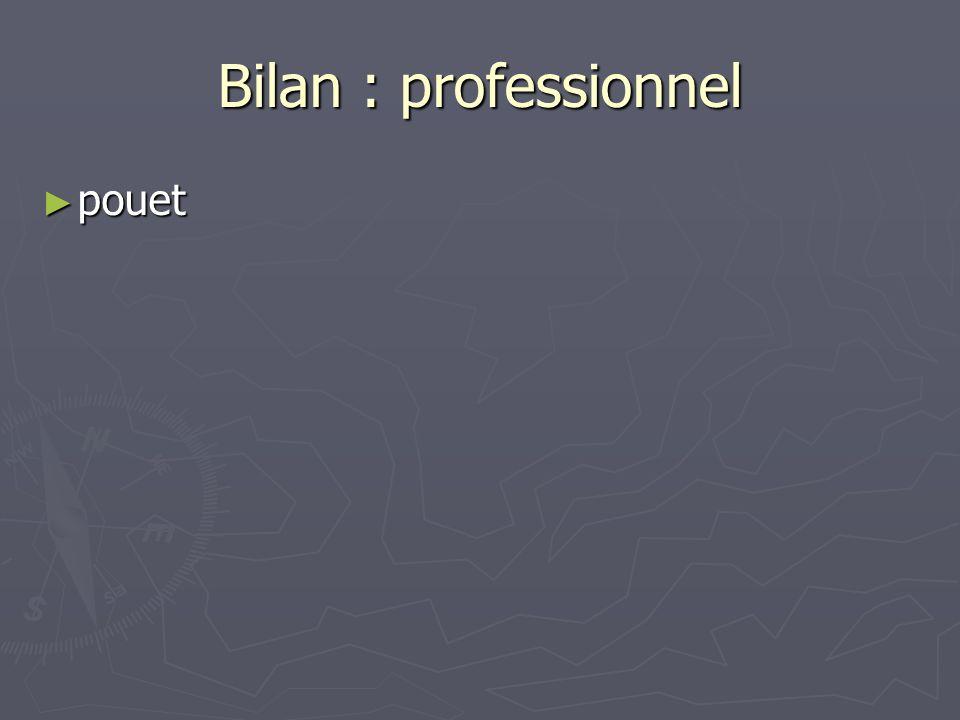 Bilan : professionnel pouet pouet