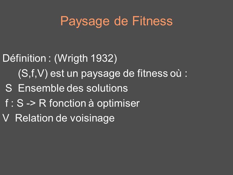 Paysage de Fitness Définition : (Wrigth 1932) (S,f,V) est un paysage de fitness où : S Ensemble des solutions f : S -> R fonction à optimiser V Relati